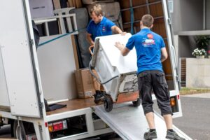 average cost of removalists